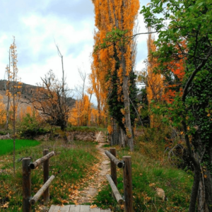 otoño en gudar javalambre
