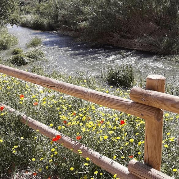 rio martin en Albalate del Arzobispo