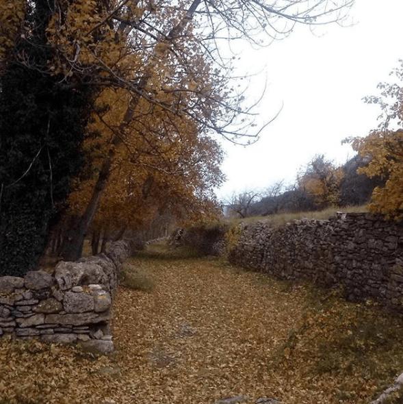 sendero Iglesuela del Cid piedra seca