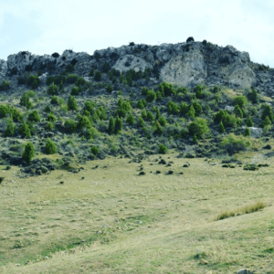 paisaje de ejulve