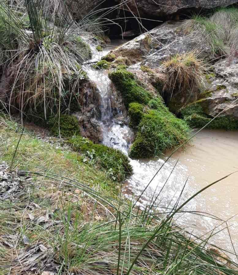 río barrando del pantano